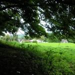 ... Kapellenberg, Blick auf das Dorf